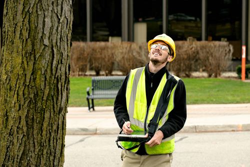 Urban Forestry | Management Planning